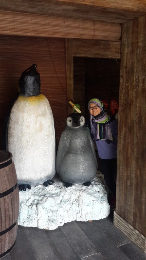 Jenis penguin terfavorit!